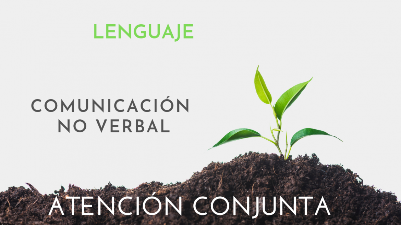 Comunicación en TEA: la comunicación no verbal